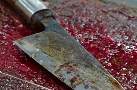 На Дрогобиччині жінку, що зарізала хлопця, взяли під варту: яке покарання їй загрожує?