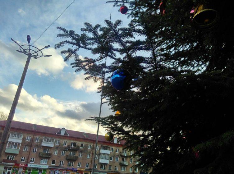 Як виглядає головна ялинка Стебника, яка росте на центральній площі міста (ФОТО, ВІДЕО)