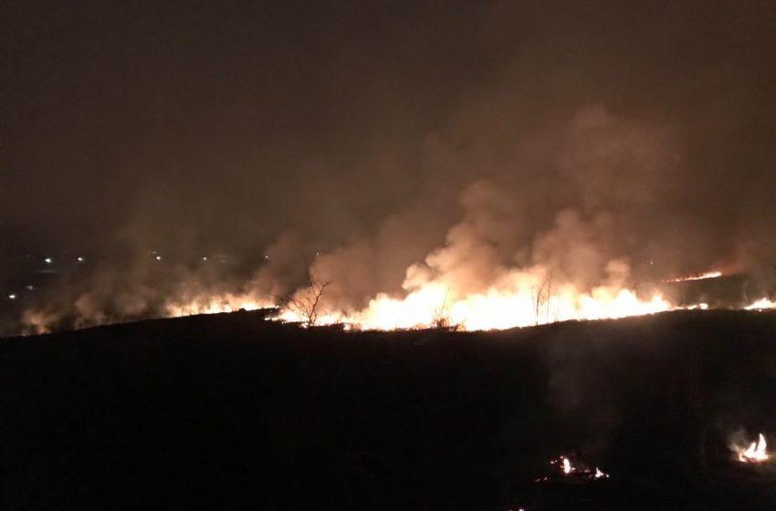 """""""Горіла ціла гора"""": на Дрогобиччині жахлива пожежа сколихнула ціле село (ФОТО, ВІДЕО)"""
