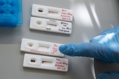 У Львові студентів університетів безкоштовно тестують на коронавірус: перші подробиці